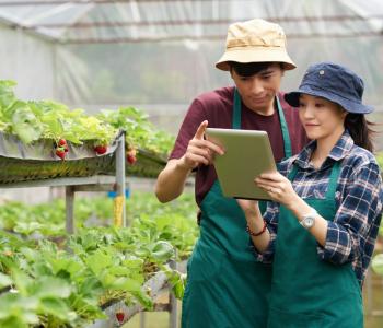 Needs YOUth untuk Regenerasi Petani Muda
